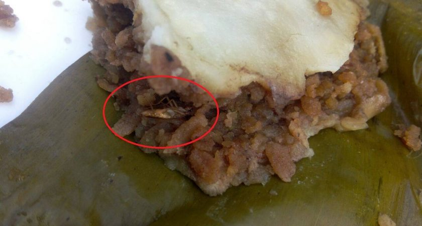 11 Disgusting things discovered  in Infopark Cochin restaurant foods :